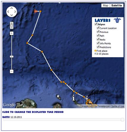 sea turtle map