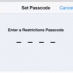 How To: Enable Restrictions on iPad